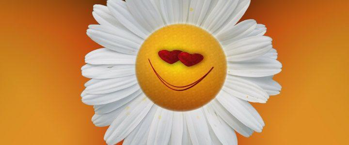 Cabinet de médecines douces Be Happy : Véritable remède santé