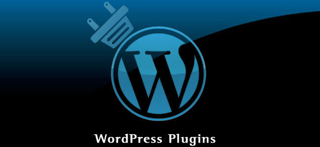 plugin wordpress à la loupe